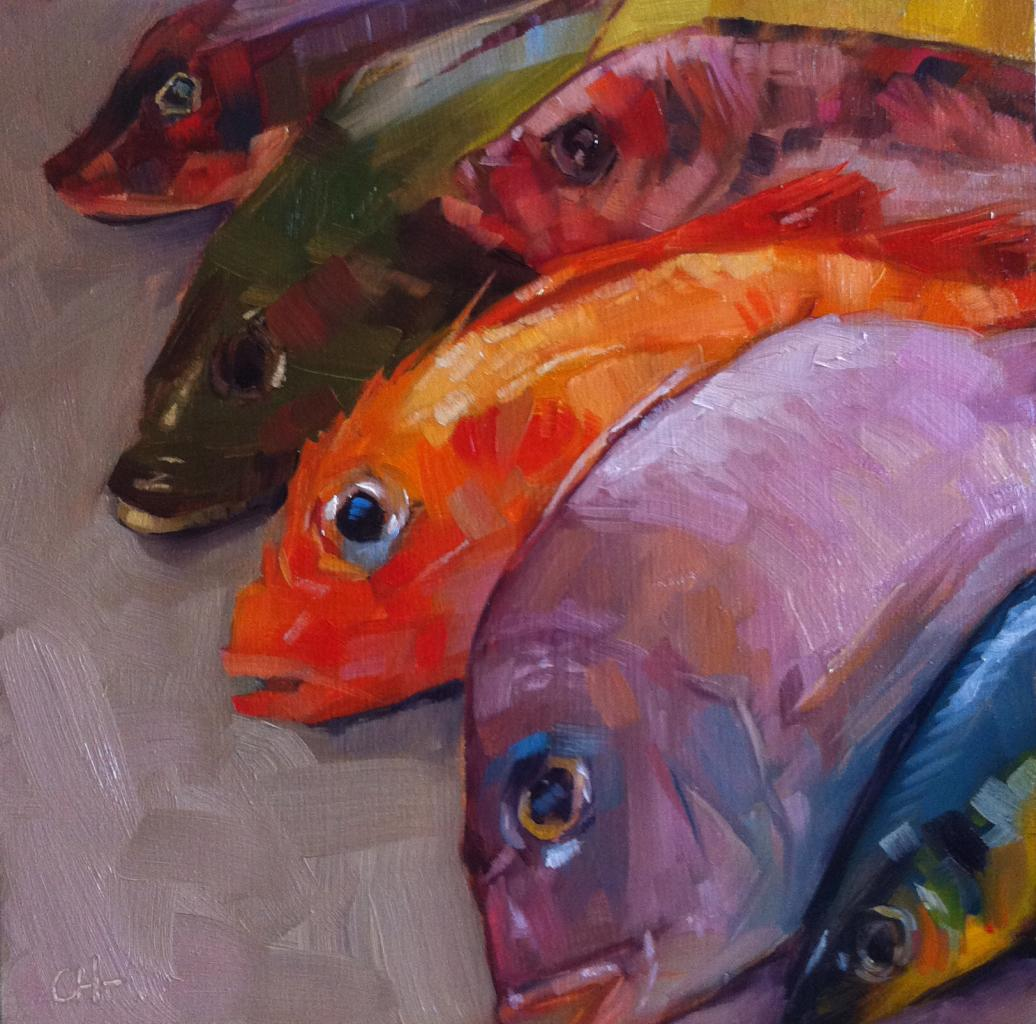 poissons arc en ciel