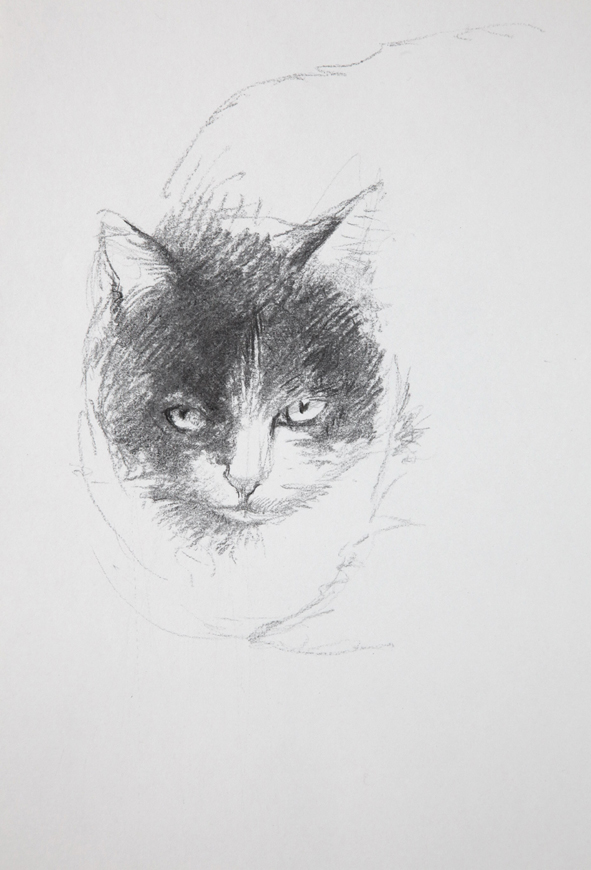 portrait chat 2